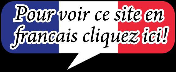 rochestercyclocross.com en francais
